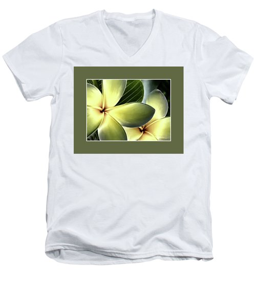 Frangipani - Plumeria Men's V-Neck T-Shirt