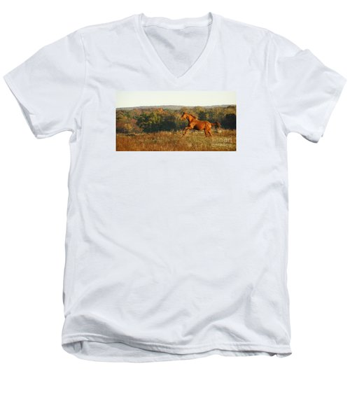 Freedom In The Late Afternoon Men's V-Neck T-Shirt