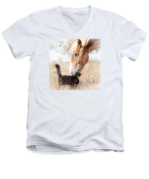 Dreamy Friendship Men's V-Neck T-Shirt