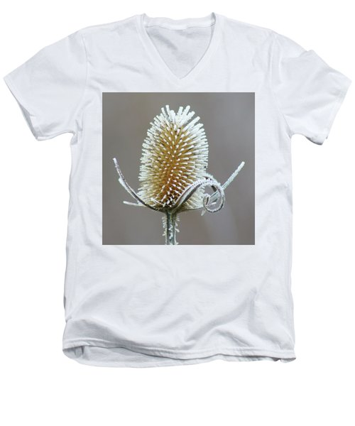 Men's V-Neck T-Shirt featuring the photograph Frosted Teasel by Nikolyn McDonald