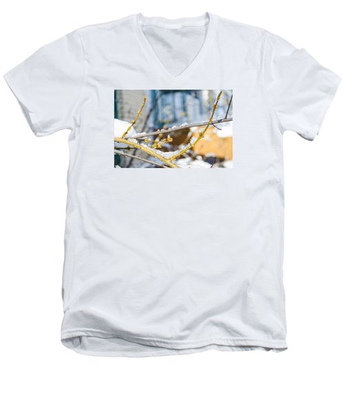 Frosty Branches Men's V-Neck T-Shirt