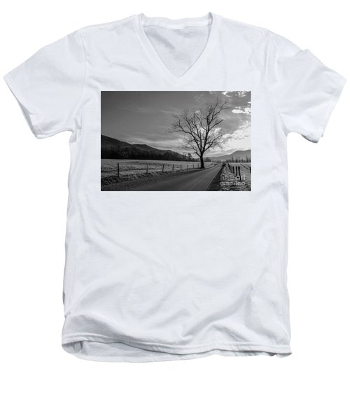 Frosty Morn Men's V-Neck T-Shirt