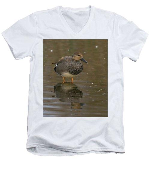 Gadwall Men's V-Neck T-Shirt