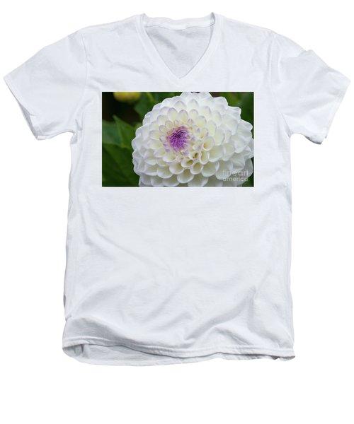 Gaylen Rose Dahlia 3 Men's V-Neck T-Shirt