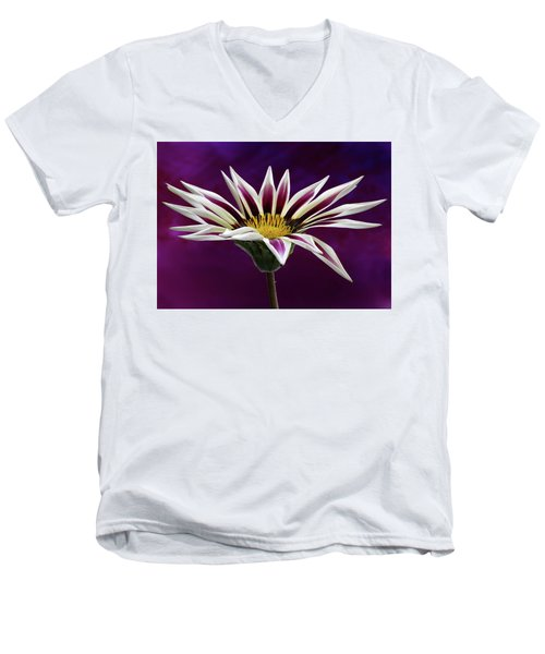 Gazania Men's V-Neck T-Shirt