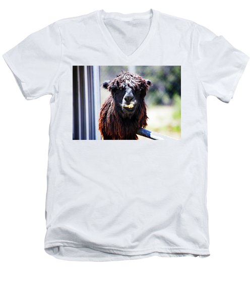 Men's V-Neck T-Shirt featuring the photograph Geofery by Anthony Jones