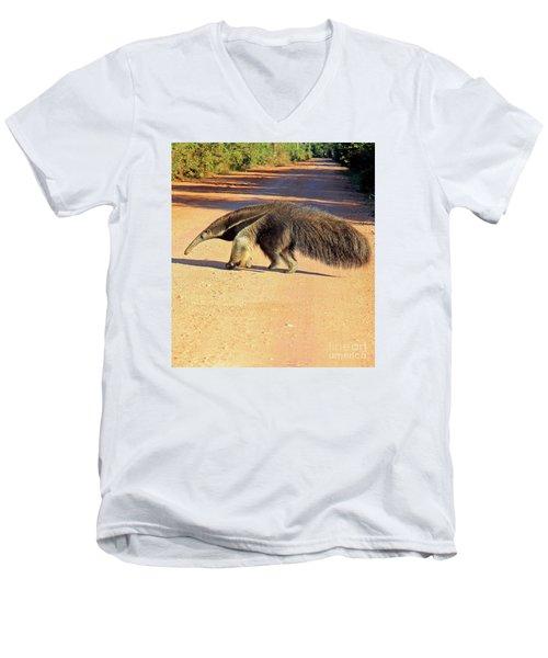 Giant Anteater Crosses The Transpantaneira Highway In Brazil Men's V-Neck T-Shirt by Nareeta Martin