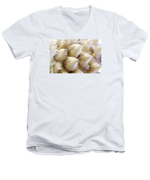 Globe Cornflower Seed Heads - Macro Men's V-Neck T-Shirt by Sandra Foster