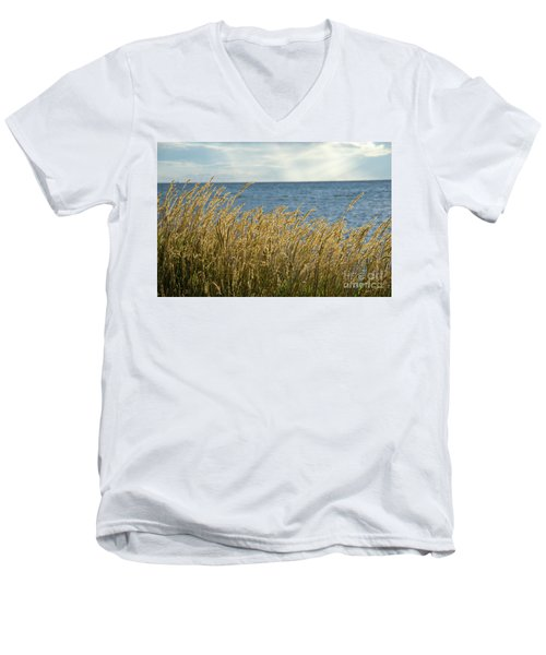 Glowing Grass By The Coast Men's V-Neck T-Shirt by Kennerth and Birgitta Kullman