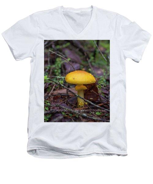 Golden Cap Men's V-Neck T-Shirt