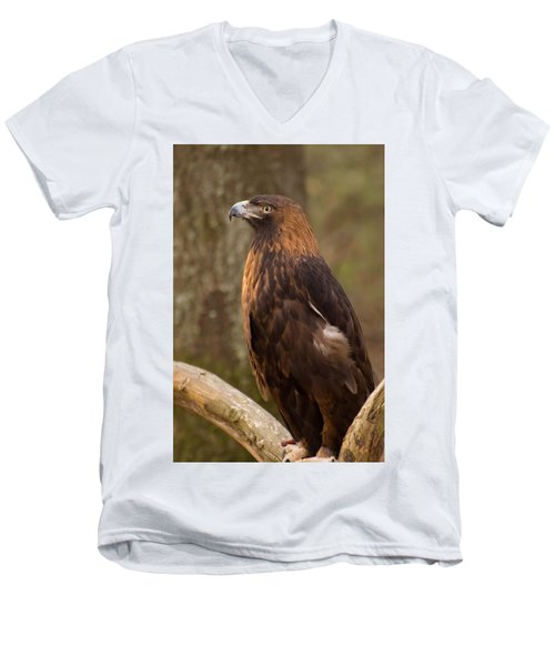 Golden Eagle Resting On A Branch Men's V-Neck T-Shirt by Chris Flees