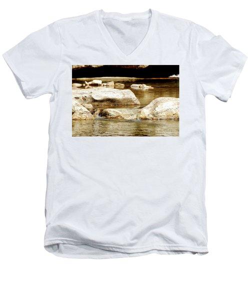 Golden Stream Men's V-Neck T-Shirt by Nancy Landry