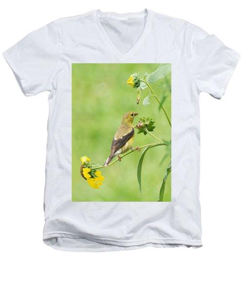 Goldfinch Snackbar Men's V-Neck T-Shirt