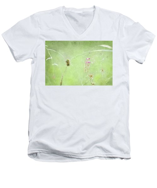Grasses And Blooms Men's V-Neck T-Shirt