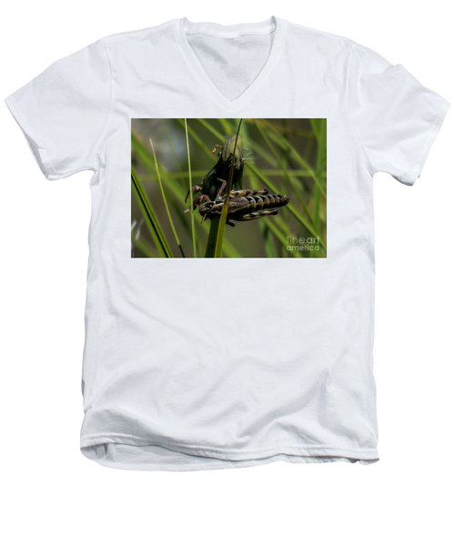 Grasshopper 2 Men's V-Neck T-Shirt