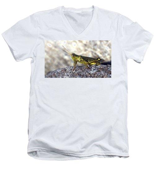 Grasshopper Men's V-Neck T-Shirt by Joseph Skompski