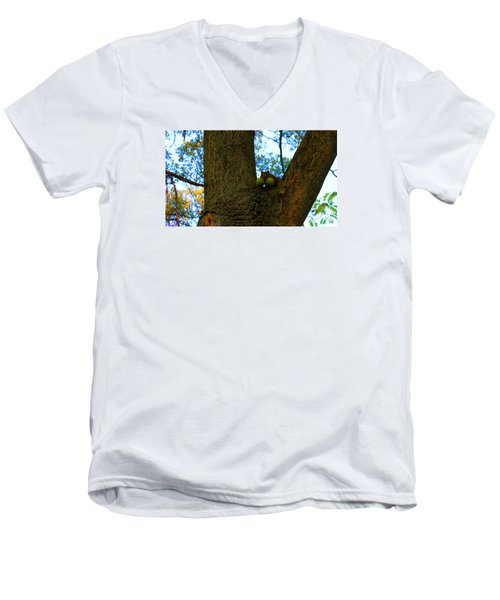 Men's V-Neck T-Shirt featuring the photograph Grateful Tree Squirrel by Michael Rucker