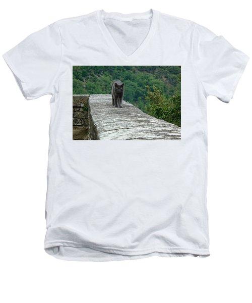 Gray Cat Prowling Men's V-Neck T-Shirt
