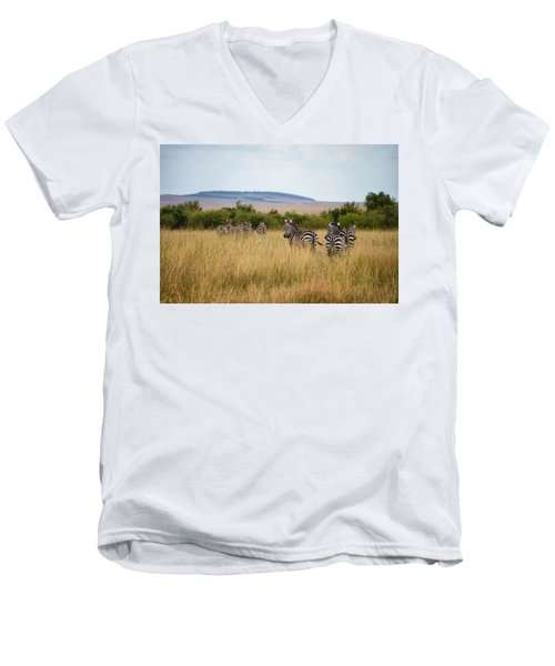 Grazing Zebras Men's V-Neck T-Shirt