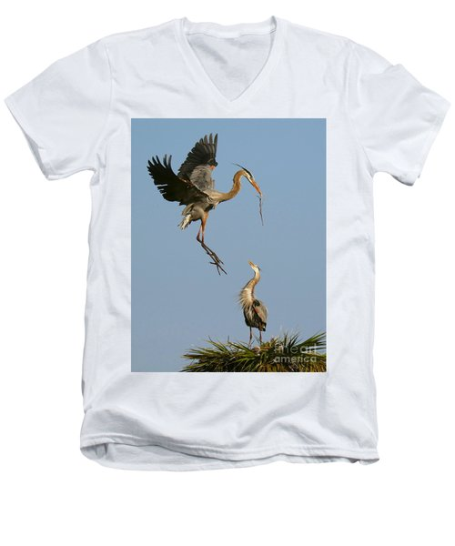 Great Blue Heron Dropping In Men's V-Neck T-Shirt by Myrna Bradshaw