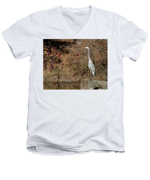 Great Blue Heron Standing Tall Men's V-Neck T-Shirt by George Randy Bass