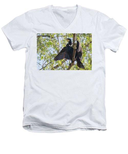 Great Cormorant - High In The Tree Men's V-Neck T-Shirt by Jivko Nakev