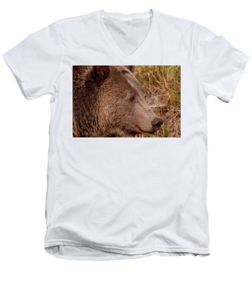 Grizzly Profile Men's V-Neck T-Shirt