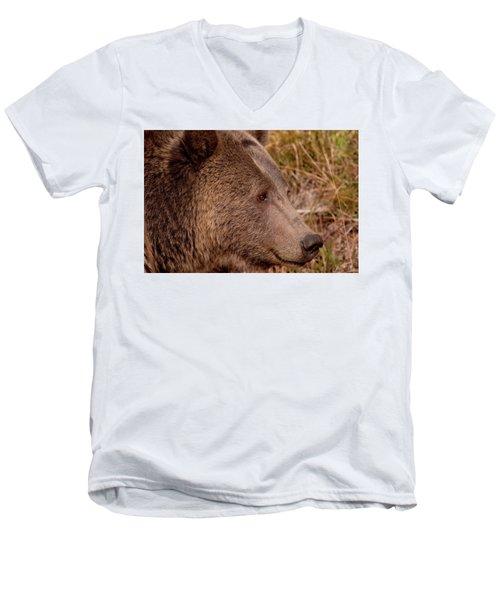 Grizzly Profile Men's V-Neck T-Shirt