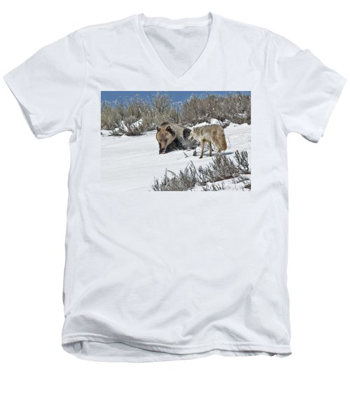 Grizzly With Coyote Men's V-Neck T-Shirt