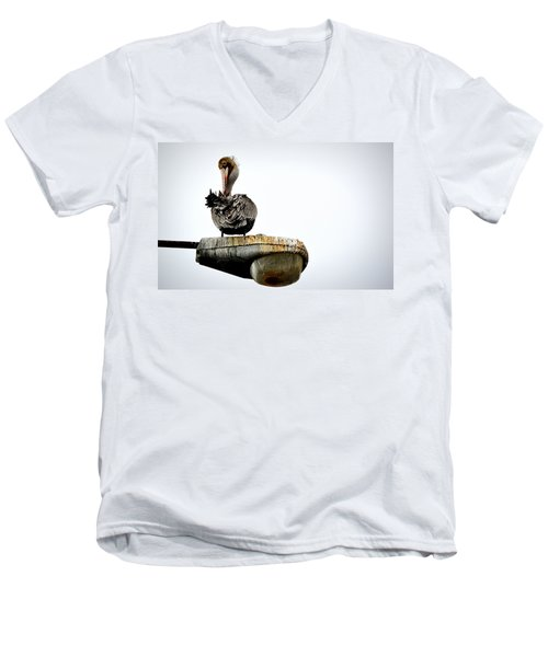 Men's V-Neck T-Shirt featuring the photograph Grooming Time by AJ Schibig