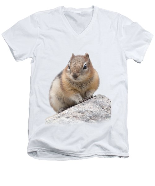 Ground Squirrel T-shirt Men's V-Neck T-Shirt by Tony Mills