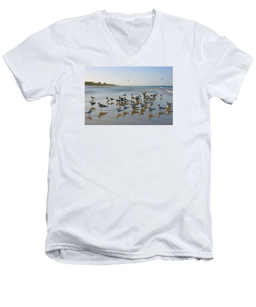 Men's V-Neck T-Shirt featuring the photograph Gulls And Terns On The Sanbar At Lowdermilk Park Beach by Robb Stan