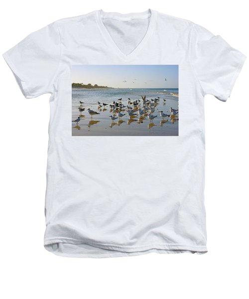 Gulls And Terns On The Sanbar At Lowdermilk Park Beach Men's V-Neck T-Shirt