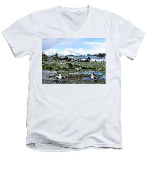 Gulls Men's V-Neck T-Shirt