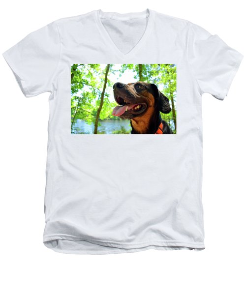 Gus On A Hike Men's V-Neck T-Shirt