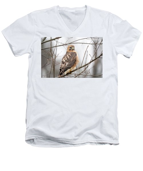 Hals Nicitating Membrane Men's V-Neck T-Shirt