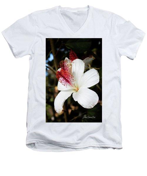 Men's V-Neck T-Shirt featuring the photograph Hawaiian Hibiscus  by Joann Copeland-Paul
