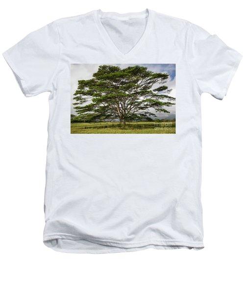 Hawaiian Moluccan Albizia Tree Men's V-Neck T-Shirt