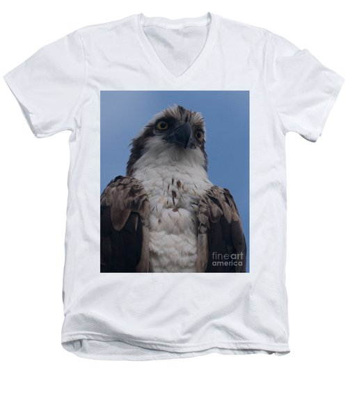 Hawk Stare Men's V-Neck T-Shirt