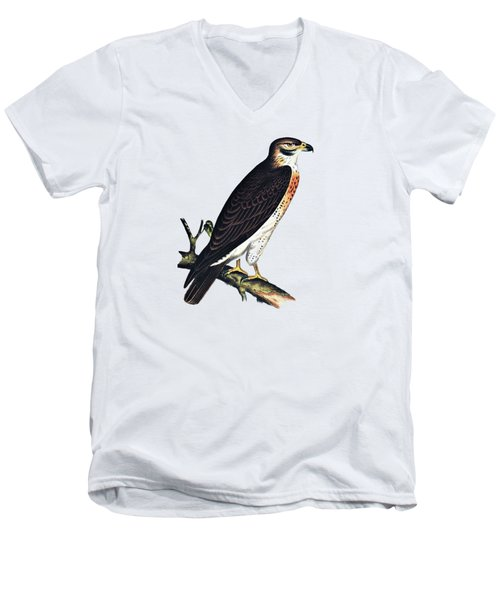 Hawk Swainsons Hawk Men's V-Neck T-Shirt by Movie Poster Prints