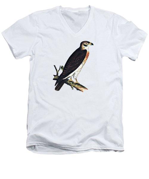 Hawk Swainsons Hawk Men's V-Neck T-Shirt