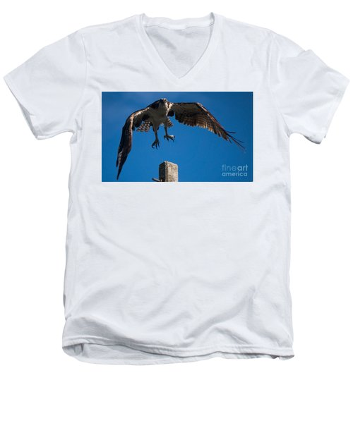 Hawk Taking Off Men's V-Neck T-Shirt
