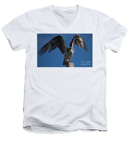 Hawk Wings Men's V-Neck T-Shirt