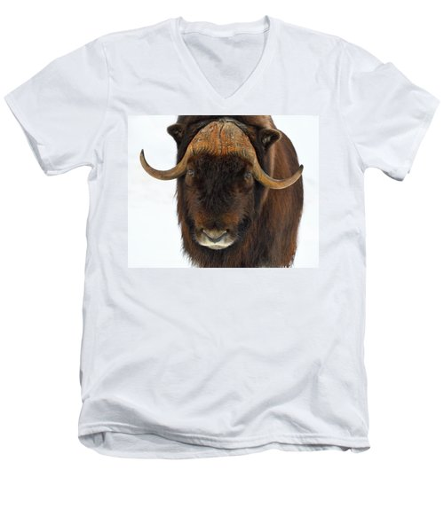 Men's V-Neck T-Shirt featuring the photograph Head Butt by Tony Beck