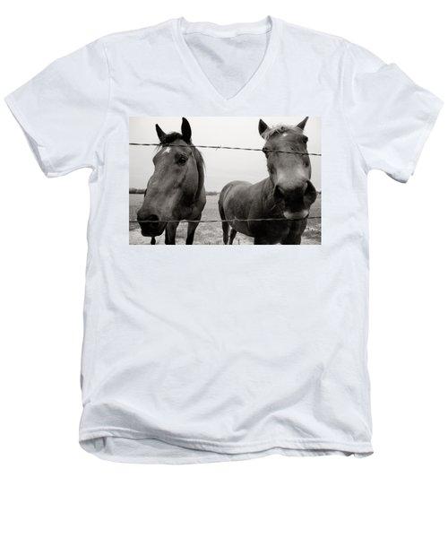 Hello Horses Men's V-Neck T-Shirt