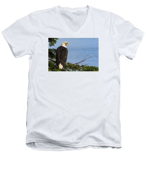 Hey Men's V-Neck T-Shirt by Gary Lengyel