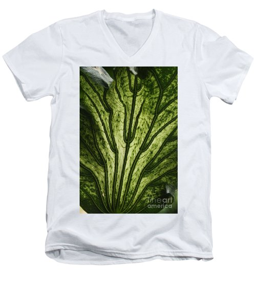 Hibiscus Tiliaceus Variegata 2 Men's V-Neck T-Shirt