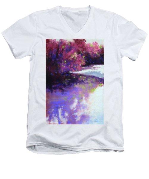 Hidden Treasures Men's V-Neck T-Shirt