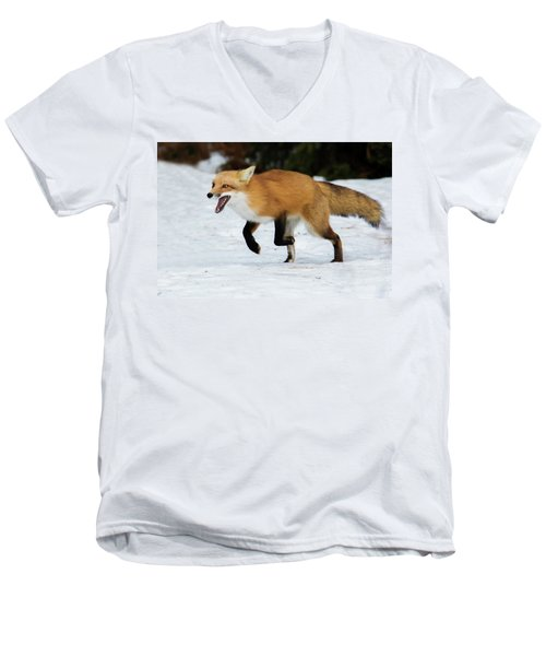 Men's V-Neck T-Shirt featuring the photograph High Speed Fox by Mircea Costina Photography