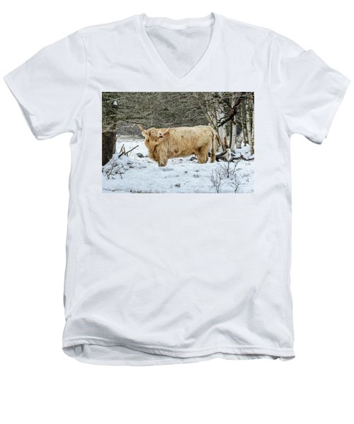 Highlander In Winter Men's V-Neck T-Shirt